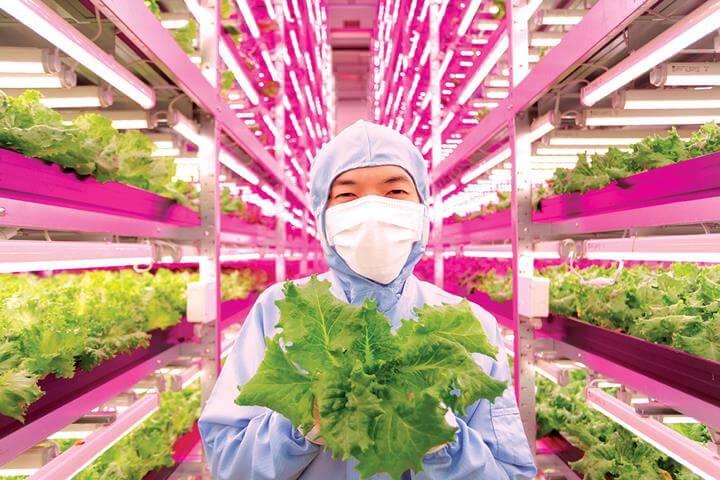 O Futuro da Nutrição – Tecnológico, Singular e Disruptivo