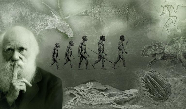 A evolução pode ser mais inteligente do que pensávamos?